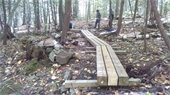 Hiking trail with foot bridge.